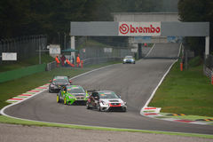 SEAT León Eurocup cars at Monza Stock Photo