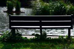 Seat na jeziornym brzeg w świetle słonecznym Obrazy Royalty Free