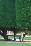 Seat para o projeto Fotografia de Stock