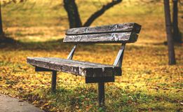 Seat for Soaking Up the Warm Tones of Autumn Stock Images