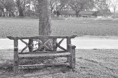 Seat sotto l'albero Fotografie Stock