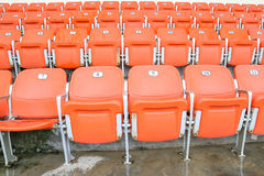 Seat in stadium Stock Images