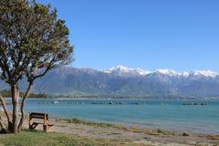 Seat sulla spiaggia con l'oceano e la montagna Kaikoura NZ Fotografia Stock
