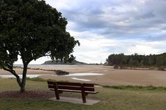 Seat under a tree overlooking Tidal flats Harbour and Mutton bird Island stock photos