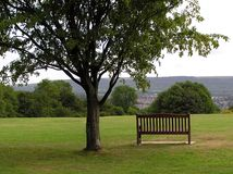 Seat With A View 4. Park bench in a rural park setting Stock Image