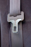 Seatbelt in Car Stock Photography