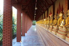 Seated buddhas Royalty Free Stock Photo