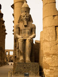 Seated colossi of Ramses II in Luxor Temple. Processional Colonnade of Amenhotep III, consisting of 14 columns, 16 feet high, arranged in 2 rows. In the columns Royalty Free Stock Photo