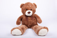 Seated teddy bear Stock Images