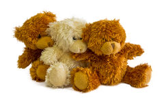 Seated teddy bears Stock Image