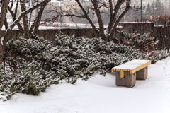 Seating bench, ground and bushes all covered in snow royalty free stock images