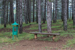 Seating bench in nature and a trash can Royalty Free Stock Photos