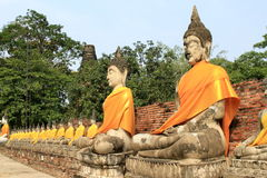 Seating Buddha images. In Ayutthaya, Thailand stock photo