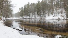 Seaton Creek, Michigan, Winter Lizenzfreies Stockbild