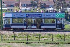 SEATON, DEVON, INGHILTERRA - 22 MAGGIO 2012: Un tram blu viaggia lungo la linea tranviaria di Seaton sul suo modo a Colyford Funz fotografie stock libere da diritti