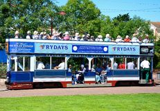 Seaton tram. View of an open topped Seaton Electric Tramway Tram packed with tourists, Seaton, Devon, England, UK, Western Europe Royalty Free Stock Images