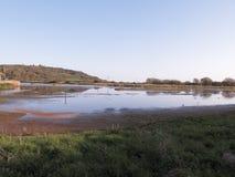 Seaton Wetlands i devon fotografering för bildbyråer