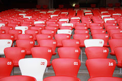 Seats in the stadium. There are a lot of seats in the stadium Royalty Free Stock Photos