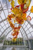 SEATTLE - 26 april, 2016: Opgeblazen glas in abstracte vormen in rood Royalty-vrije Stock Foto's