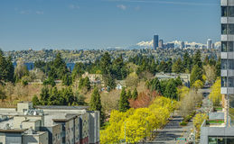 Seattle, Washington and Olympic Mountains from Bellevue in the Spring Stock Photo