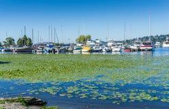 Seattle-Boots-Jachthafen 2 Lizenzfreies Stockbild