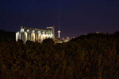 Seattle Elliot Bay at night behind the trees Royalty Free Stock Photo