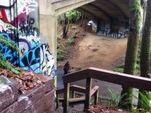 Seattle-Graffiti Lizenzfreies Stockbild