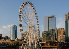 Seattle Great Wheel. The Great Wheel at the waterfront is a major tourist destination. The attraction is open all year and 42 enclosed gondolas hold over 300 Royalty Free Stock Image