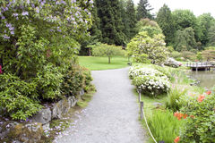 Seattle Japanese Garden. Beautiful flowers and plants in Seattle Japanese Garden in spring time Stock Photos