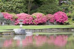 Seattle Japanese garden. Beautiful reflections of flowers and lantern in Seattle Japanese garden Royalty Free Stock Photo
