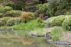 Seattle Japanese garden. Picturesque Japanese garden in spring Stock Images