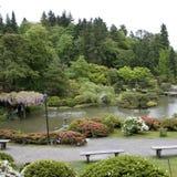 Seattle japanträdgård Arkivfoton