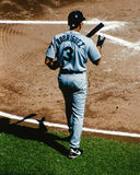 Seattle Mariners Alex Rodriquez stepping up to the plate. Royalty Free Stock Image