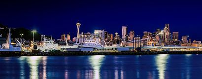 Seattle Night vision Royalty Free Stock Images