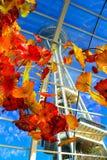 Seattle przestrzeni igła widzieć przez kolorowych kwiatów fotografia royalty free