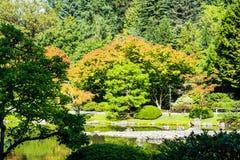 Japanese Garden in Seattle`s Washington Park Arboretum. In Seattle`s Washington Arboretum Park Stock Photography