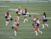 Seattle Seahawk Cheerleaders. The Seattle Seahawk Seagals - Cheerleaders Royalty Free Stock Photo