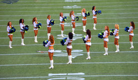 The Seattle Seahawk Cheerleaders Royalty Free Stock Photography