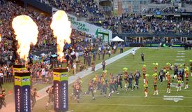 Seattle Seahawks Take the Field. At Century Link Stock Photo