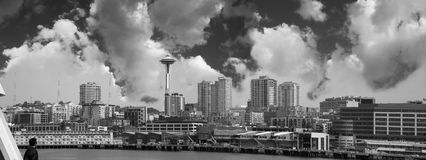 Seattle Skyline Panoramic Royalty Free Stock Photography
