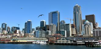 View of Seattle skyline royalty free stock images