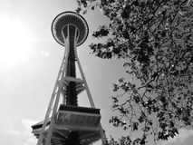 Seattle Space Needle royalty free stock image