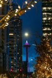 Seattle Space Needle at night royalty free stock photo