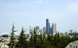 Seattle a través de árboles de hoja perenne Fotografía de archivo libre de regalías