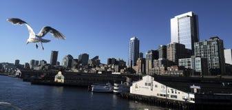 Seattle, WA Skyline Royalty Free Stock Photo