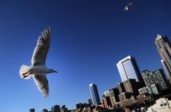 Seattle, WA Skyline stock photo