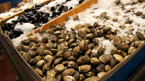 SEATTLE WASHINGTON USA - October 2014 - Fresh seafood display at Pike Place Public Market Stock Images