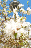 seattle wiosna Zdjęcia Royalty Free