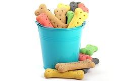 Seau bleu et festins colorés empilés de chien Photo stock