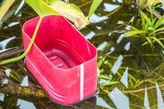 Seau dans l'étang de plante aquatique Image stock